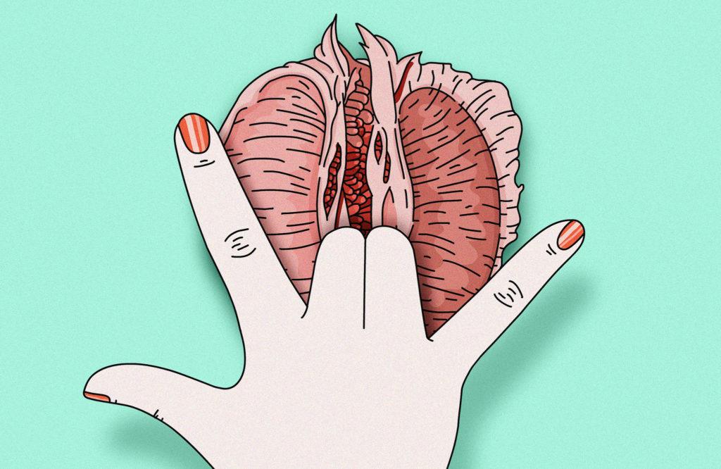 Менструирующая вагина